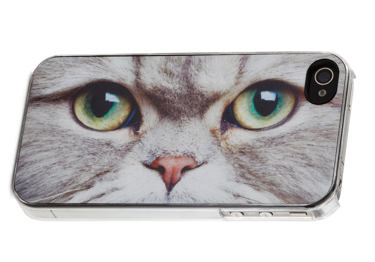 iPhone Kedi Özelliği Geliyor :)