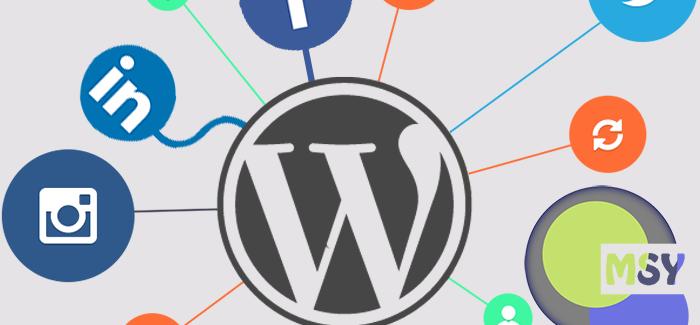 WordPress Sitenizdeki Yazıları Otomatik Paylaşın