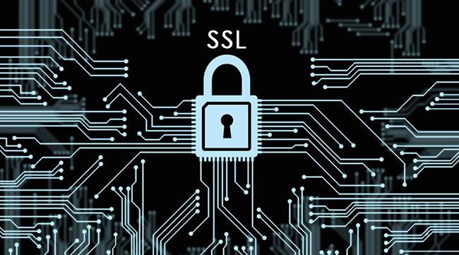 Secure Socket Layer (SSL) Nedir?